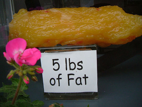 Five-pounds-of-fat